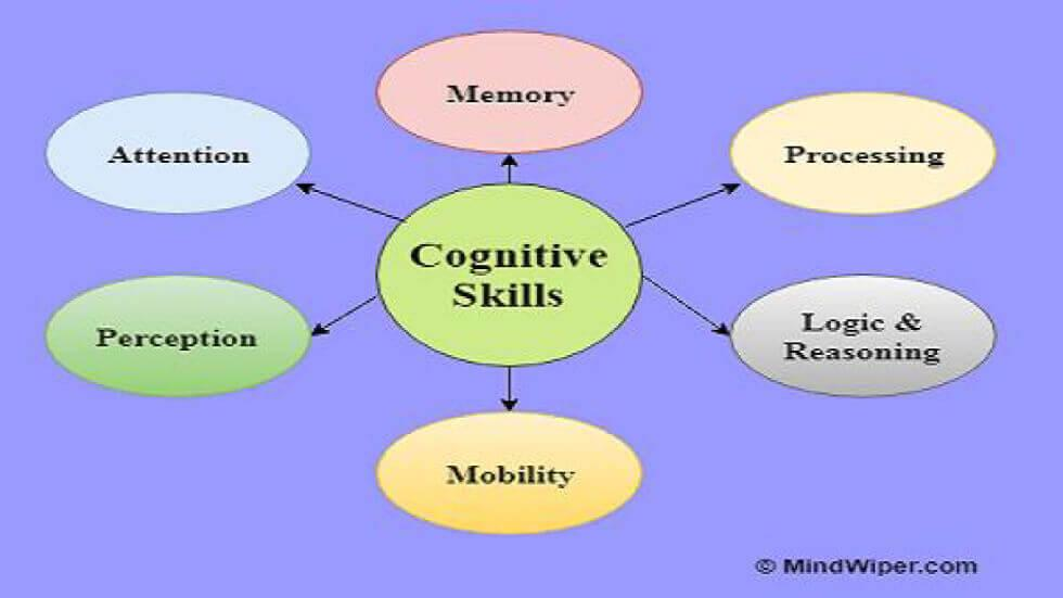 Acting Upon Your Child's Cognitive Skills - Simple Guidelines