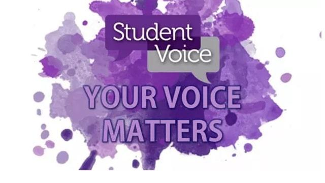 Bringing Student Voice to Scale